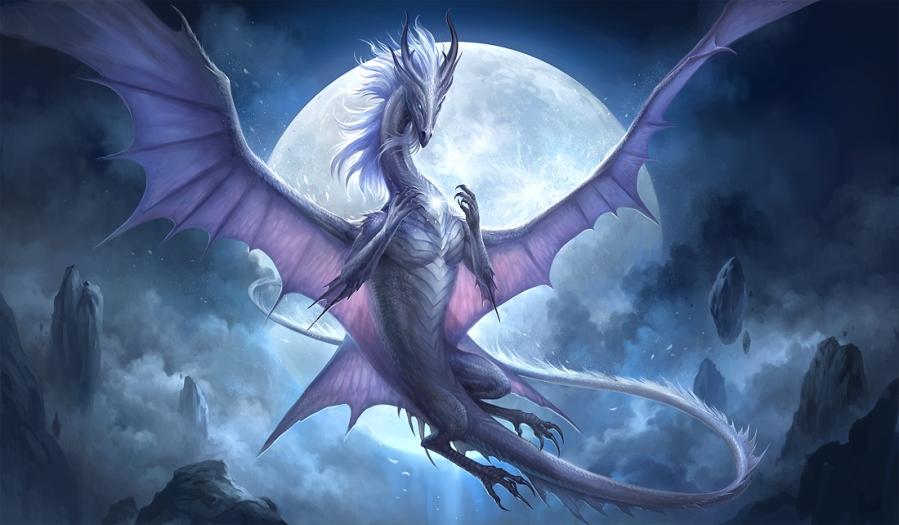 white_dragon_v2_by_sandara-d9kdoot